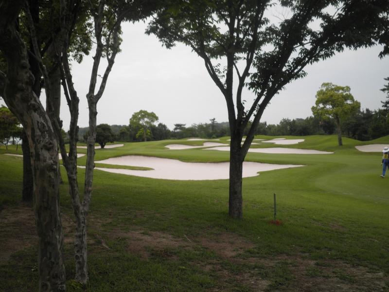 ゴルフ場 8311