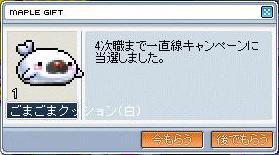 20070426192331.jpg