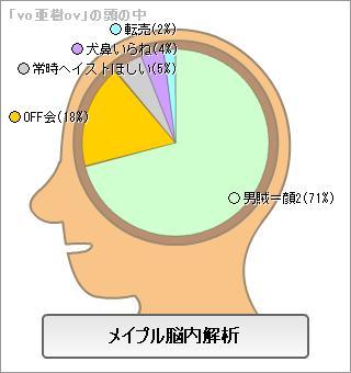 投 メイプル脳内解析