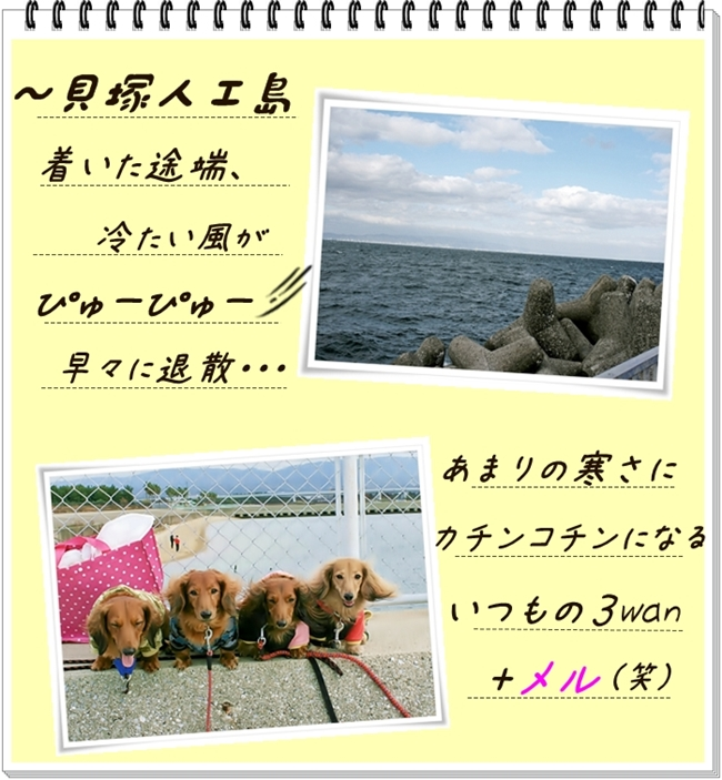 c_20110417063624.jpg