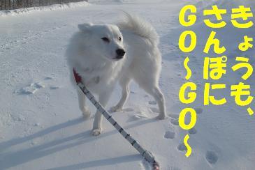 CIMG5360  10