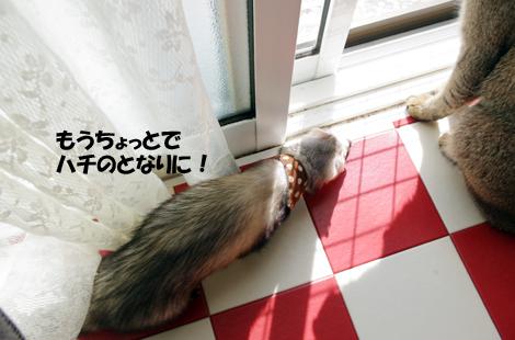 2011040804.jpg