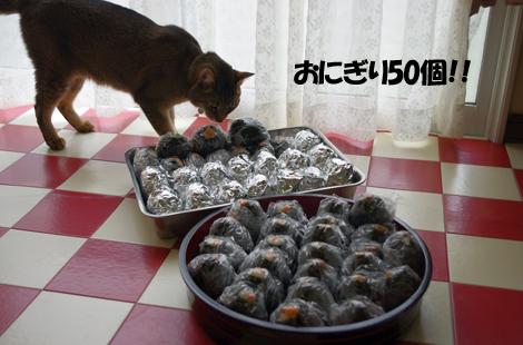 2011050701.jpg