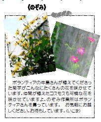11-7.jpg