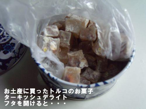 2011.08トルコ 876no1