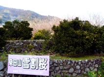 須崎P1030389