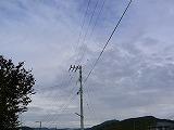 P3030010.jpg