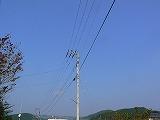 P3050975.jpg