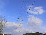 P3090019.jpg