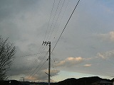 P3090068.jpg