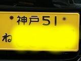 P3140983.jpg