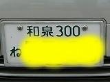 P3140985.jpg