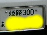 P3140988.jpg