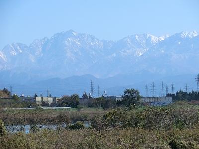 神通川左岸