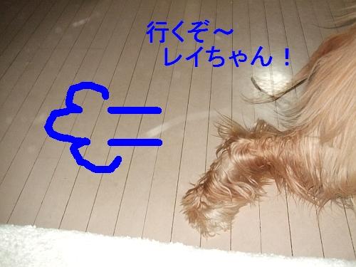 PO20111019_0011.jpg