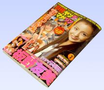 月刊ヤングマガジン2011年7月号