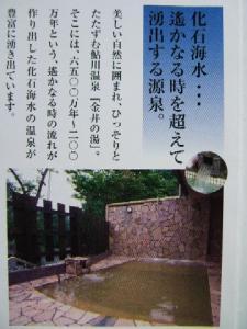 鮎川温泉・金井の湯、パンフレット①