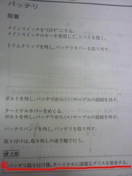 P1010297_convert_20110406210323.jpg
