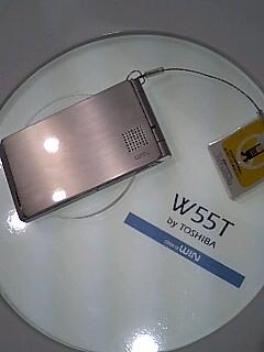 W55T1.jpg