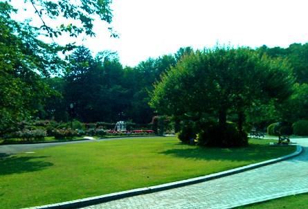 20130605 satomipark-2