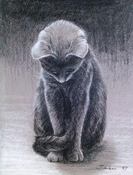 monodrawingcatsml.jpg