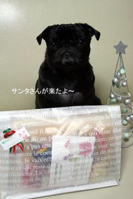 サンタさんからのプレゼントです!