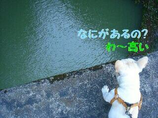DSC01672.jpg