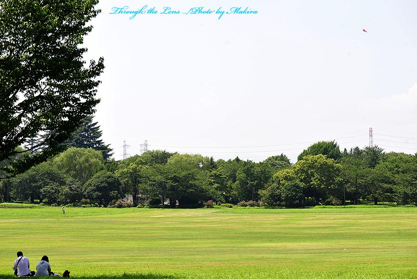 記念公園1