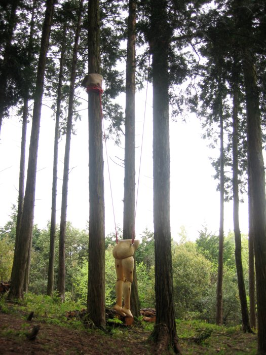 woodland-01-.jpg