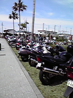 バイクたくさん