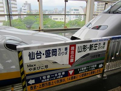 IMG_1113-fukusima.jpg