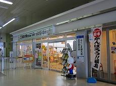 IMG_1128-fukusima.jpg