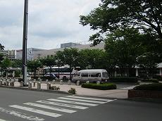 IMG_1132t-noji1.jpg