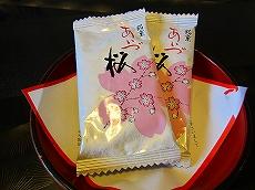 IMG_1485-wasikura.jpg