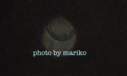110531N0705.jpg