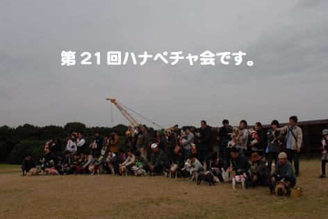 111111-21.jpg