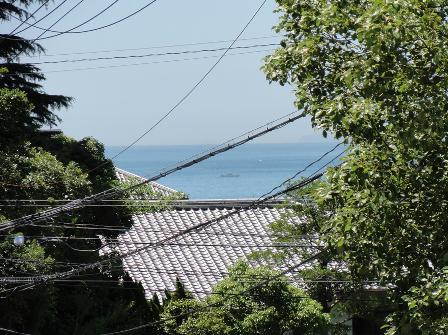 sakuragi844.jpg