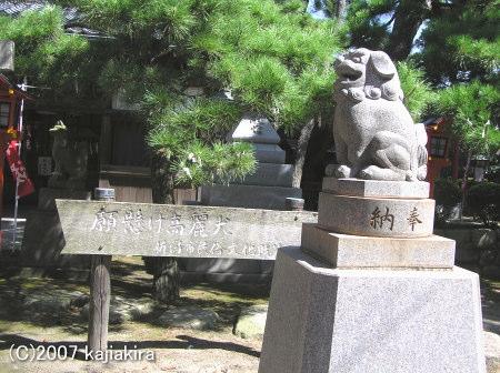 湊稲荷神社05-男性用の高麗犬さま