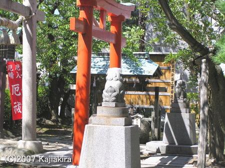 湊稲荷神社07-2対の高麗犬さま