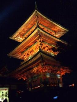 ライトアップ特別拝観(清水寺にて)