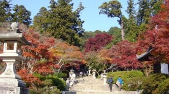観心寺の紅葉1