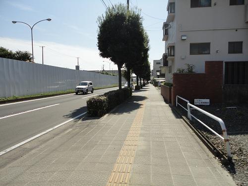 1110suzuki002.jpg