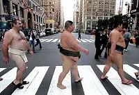 s-sumo.jpg