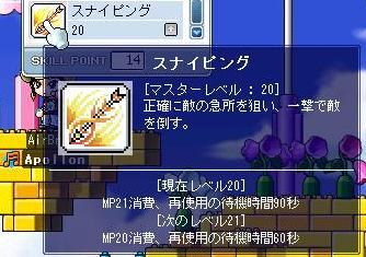Maple05.jpg