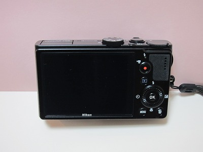 p300 (3)