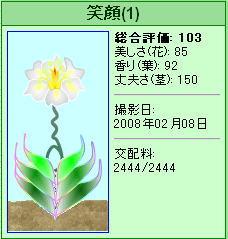 0208_20080208145041.jpg
