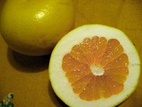 pomelo-orange