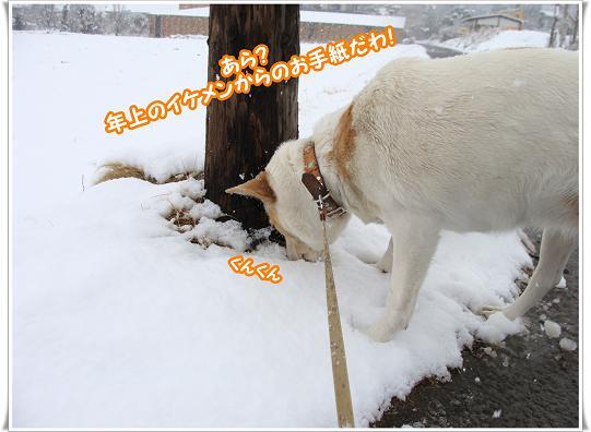 010otegami_20120303170758.jpg