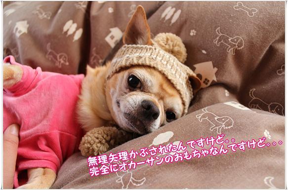 030muriyari.jpg