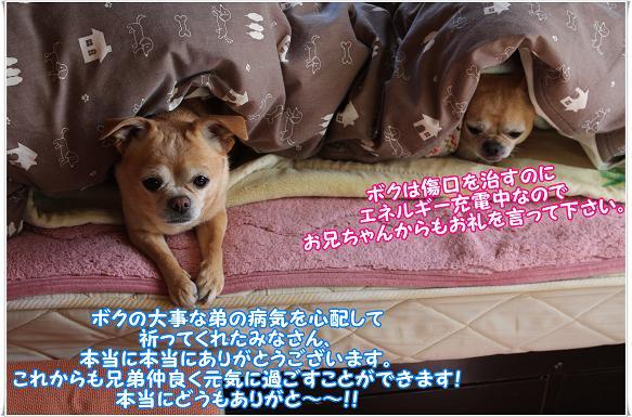 057OREI.jpg